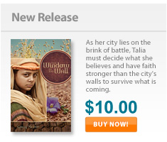 Check out Window in the Wall, the newest Christian youth novel from JourneyForth