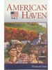 American Haven cover image